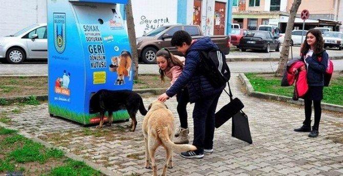 Pugedon İle Hayvanlar Aç Kalmayacak