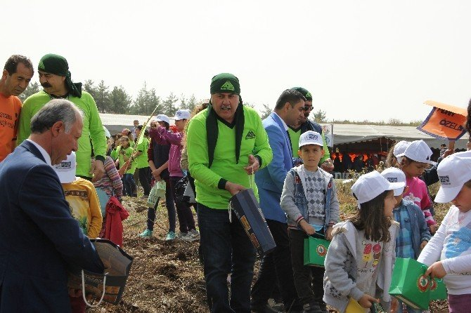 Minik Eller Amanos Dağlarına 20 Bin Fidan Tohumu Ekti