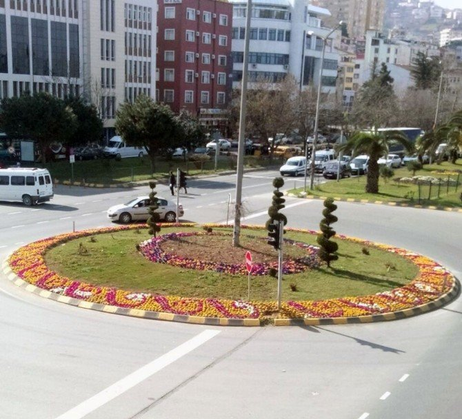 Trabzon Rengarenk