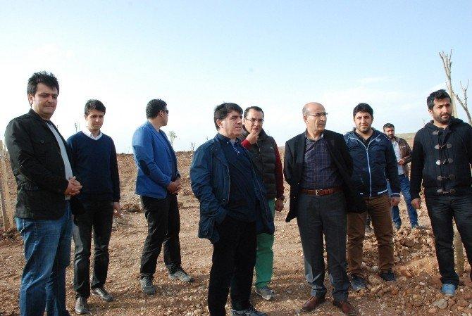 GAP Başkanı Sadrettin Karahocagil Beşpınarı Gezdi