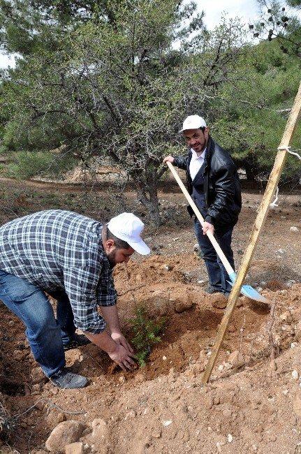 Gaziantep AK Gençlik'ten Hatıra Ormanı