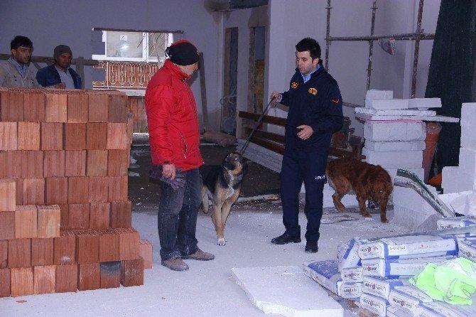 Çatıda Mahsur Kalan Köpekleri İtfaiye Kurtardı