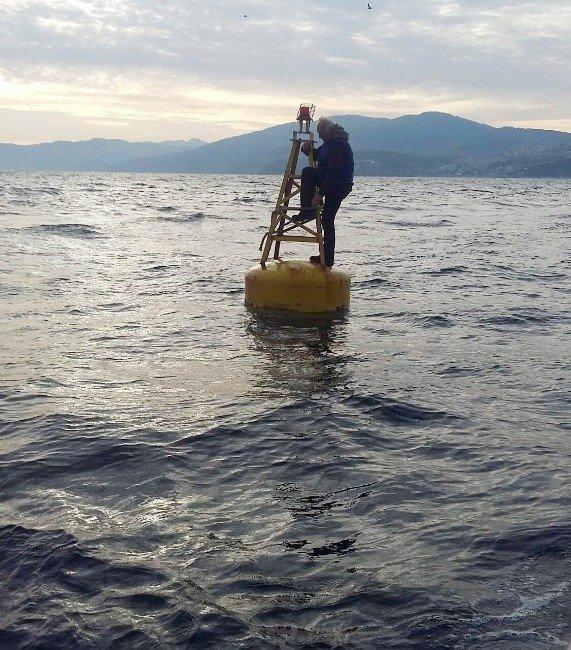 Denizin Ortasındaki Duba Hayatını Kurtardı