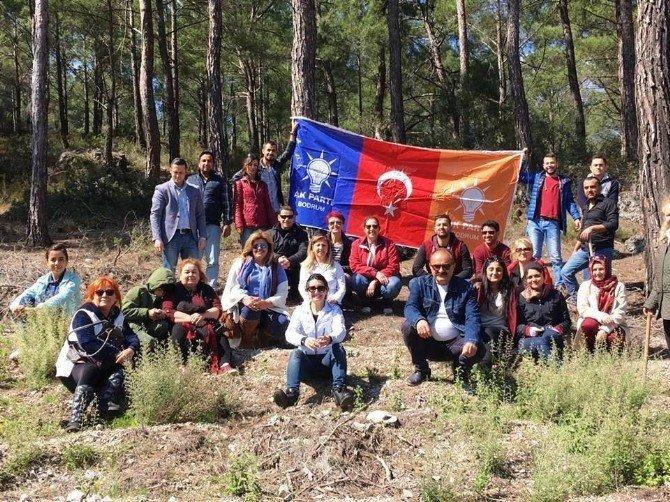 AK Partililer Bodrum'da Yanan Ormanlık Alanlara Fidan Dikti