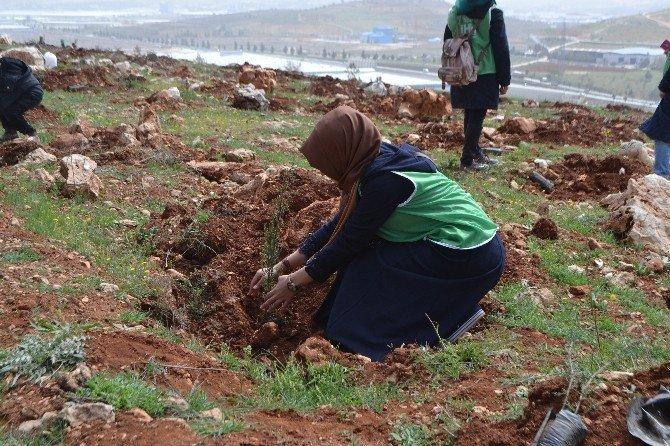 Güney Koreli Gönüllü Öğretmen Suriyeli Yetimler İçin 800 Bin Kilometre Yol Kat Etti