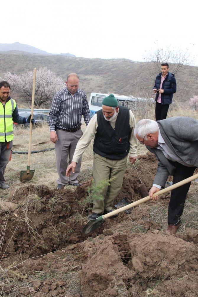 Erciyes dağı eteklerine bin fidan dikildi