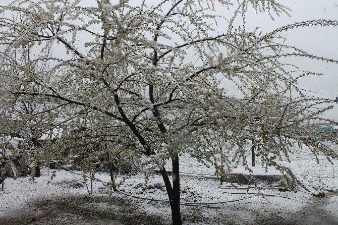Mart'ta Kar Esareti