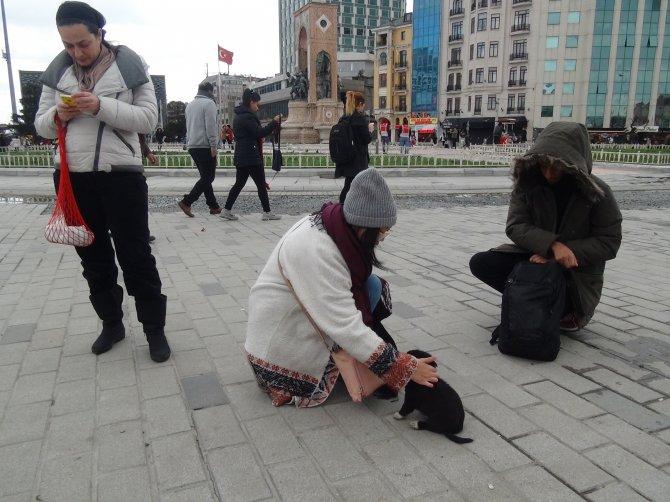 Taksim'in yeni maskotu Zeytin ve yavruları