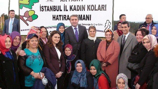 """AK Parti'li Temurci: """"Dünyadaki Her Bir İnsan İçin 7 Milyar Fidan Hedefliyoruz"""""""