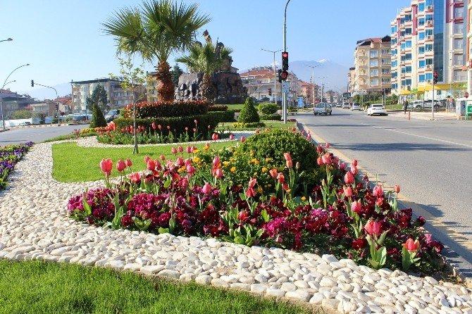 Alaşehir Rengarenk Oldu