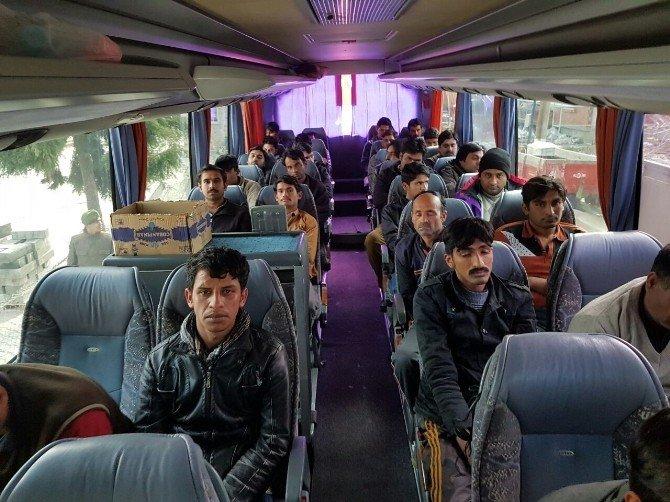 Otobüs Şoförü Ve Muavini İnsan Kaçakçılığı Yaparken Yakalandı