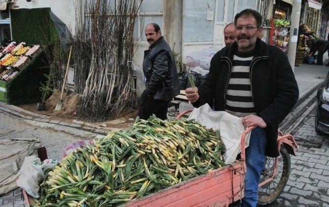 Baharın Müjdecisi Çiriş Tezgahlarda Yerini Aldı