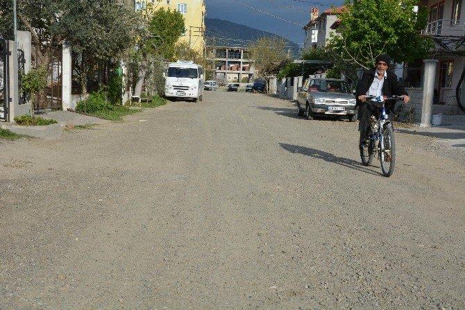 Dalaman'da Sokak Sakinleri Hizmet Bekliyor