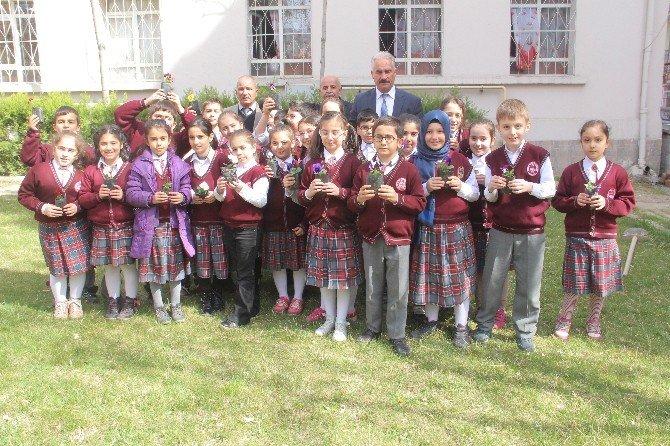 Ters Laleyi Okul Bahçesinde Yetiştirdiler