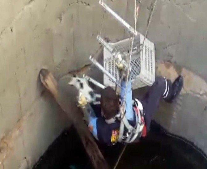 Su Kuyusuna Düşen Kedi İtfaiye Tarafından Kurtarıldı