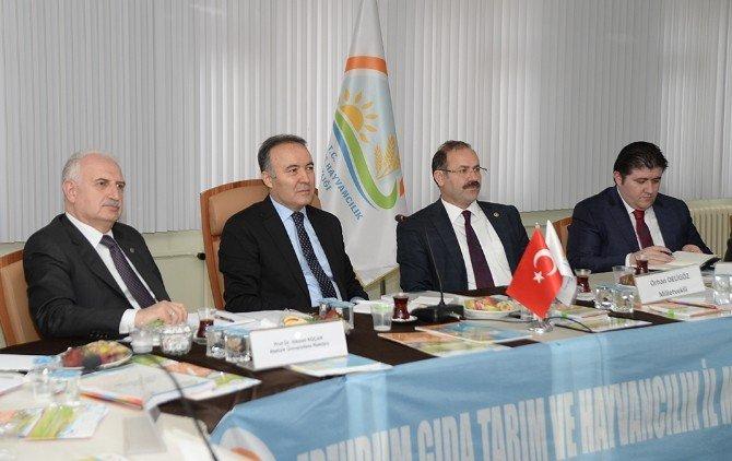 Erzurum Tarım Konseyi 2.değerlendirme Toplantısı Yapıldı