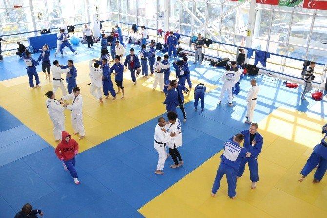 Judo Milli Takımları Son Hazırlıklarını Yaptı