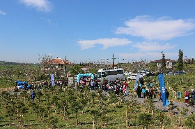 Başakşehir'de Her Bebek Kendi Ağacıyla Büyüyecek