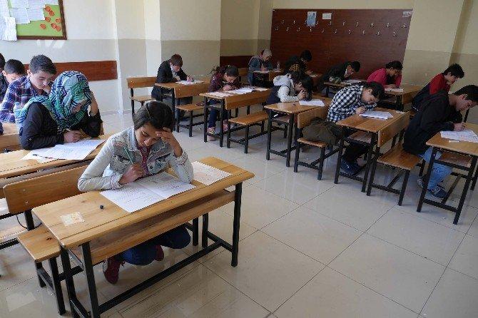 Haliliye Belediyesi Öğrencileri Zeka Olimpiyatlarına Hazırlıyor