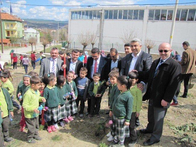 Hisarcık'ta Fidan Dikme Etkinliği