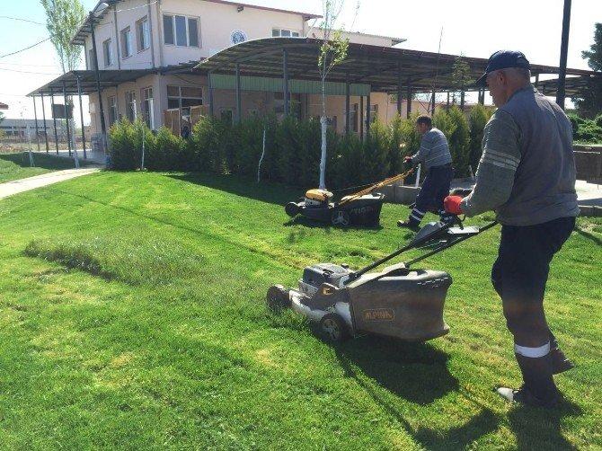 Daha Yeşil Alaşehir İçin Çalışıyorlar