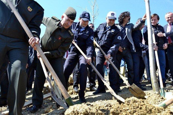 Polis Ve Askerler, Şehit Olan Silah Arkadaşları İçin Fidan Dikti