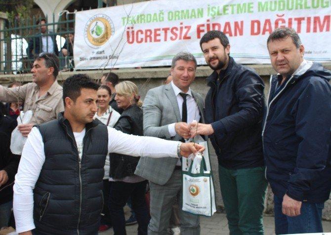 Tekirdağ'da Cuma Namazı Sonrası Ceviz Ve Erguvan Fidanı Dağıtıldı
