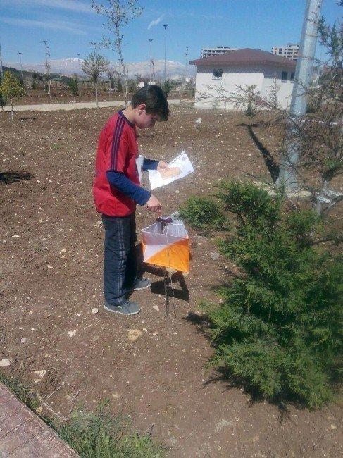 Okullar Arası Oryantiring Müsabakaları Sona Erdi