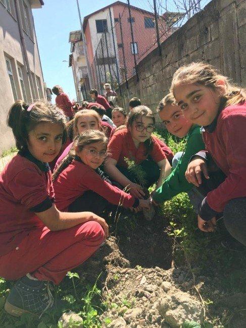 Şehit Salim Uçar İlkokulunda Fidan Dikimi