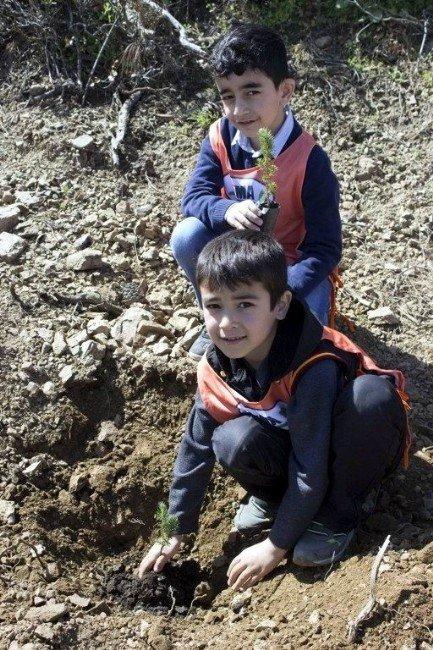 Salihli'de 500 Fidan Toprakla Buluştu