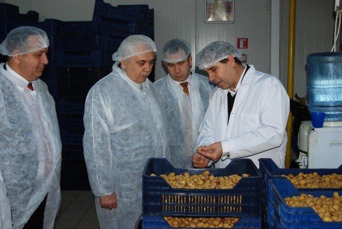 Kardelen'de Hijyenik Üretim