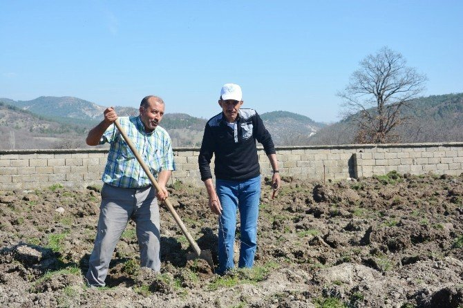 Köylere Hizmet Götürme Birliği'nden Meyve Fidanı Desteği