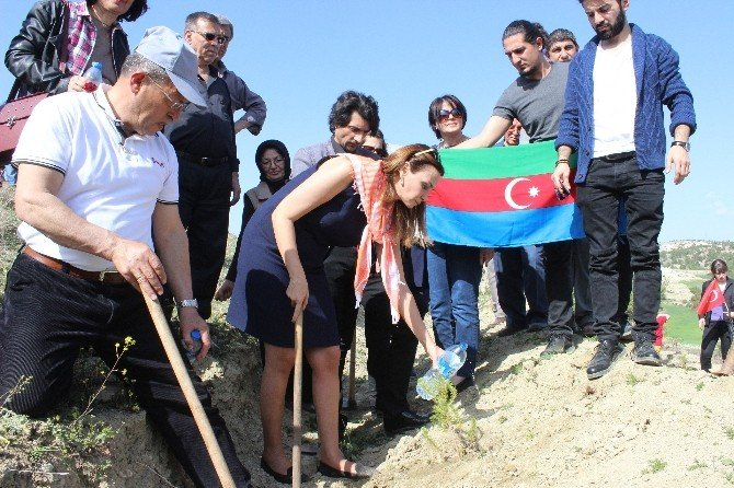 Azeri Milletvekili Paşayeva'dan Ermenistan'a Sert Sözler