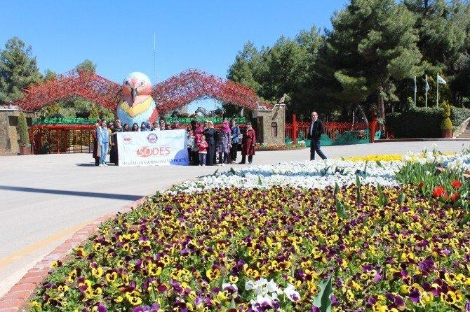 Samsatlı Bayanlar Gaziantep'i, Gezdiler