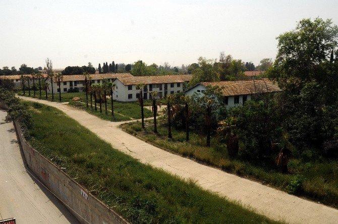 Ataş Yerleşkesini Mersin'e Kazandırma Çalışmaları Sürüyor