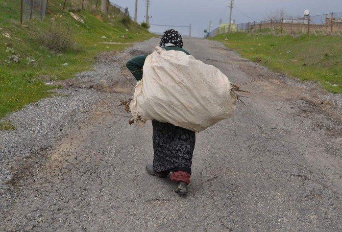 Günde 5 Kilometre Yürüyerek, Evinin İhtiyaçlarını Karşılıyor
