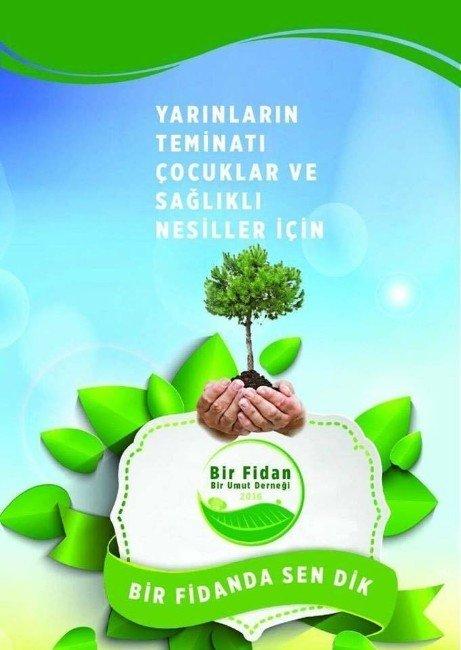 Van Yeşillenecek