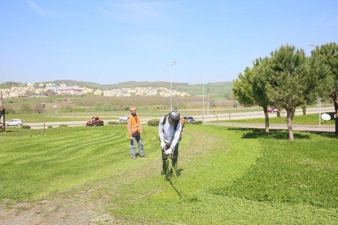 Adapazarı Belediyesi Yenikent Bölgesinde Çim Biçme İşlemerine Başladı