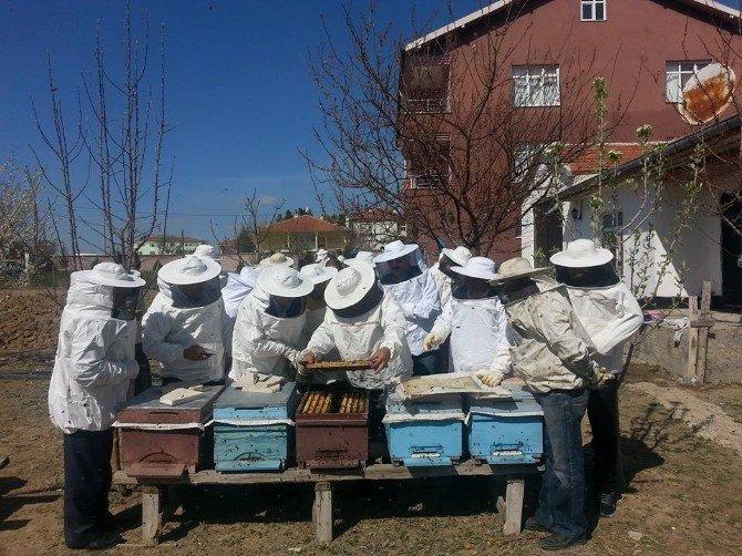Kulu'da Komek'ten Uygulamalı Arıcılık Kursu