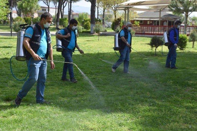 Nazilli'de Haşereler İçin İlaçlama Çalışmalarına Başlandı