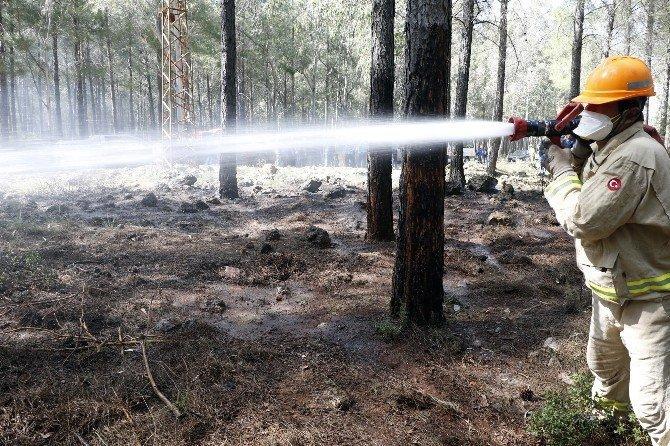 Yabancı Ormancılar, Ormanda Çıkan Yangını Söndürmek İçin Kıyasıya Uğraş Verdi