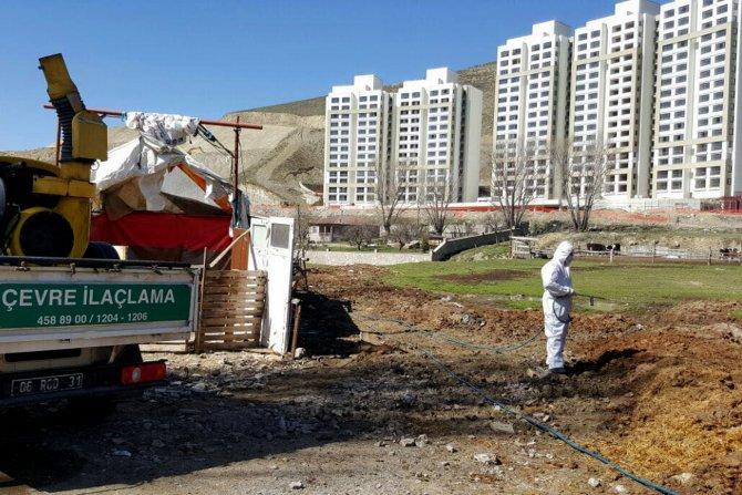 Çankaya Belediyesi, 4 bin hektar alanı ilaçladı
