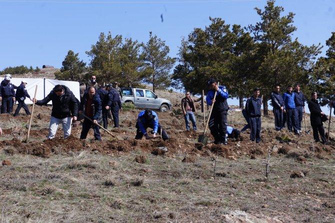 Erzurum'da polisler fidan dikti