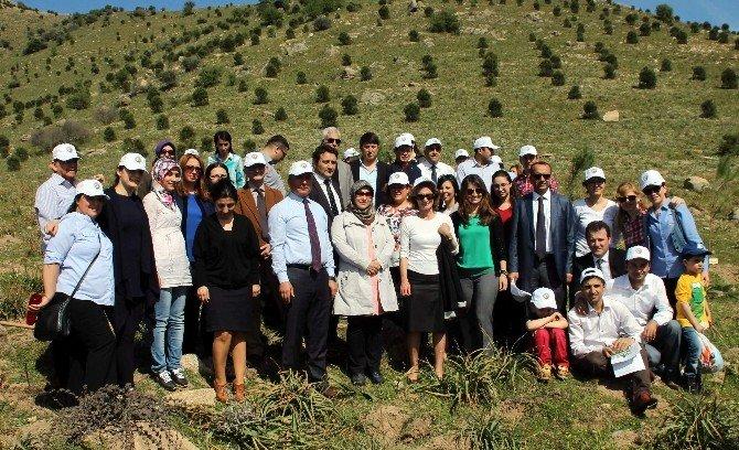 Aydın'da Yenidoğan Her Bebeğin Artık Bir Fidanı Var