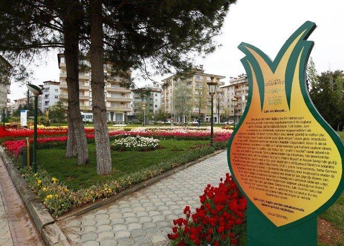 Gaziantep Baharda Bir Başka Güzel