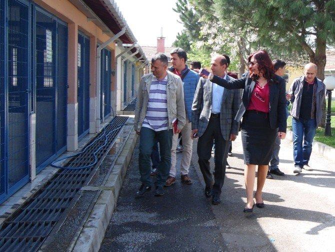 Nilüfer Belediyesi'nin Çalışmalarını Yerinde İncelediler
