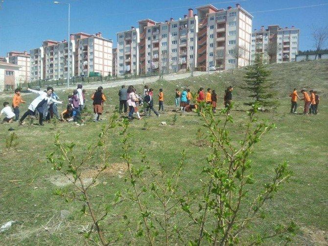 Yozgat TOKİ Ortaokulu Öğrencileri Şehitler İçin Fidan Dikti