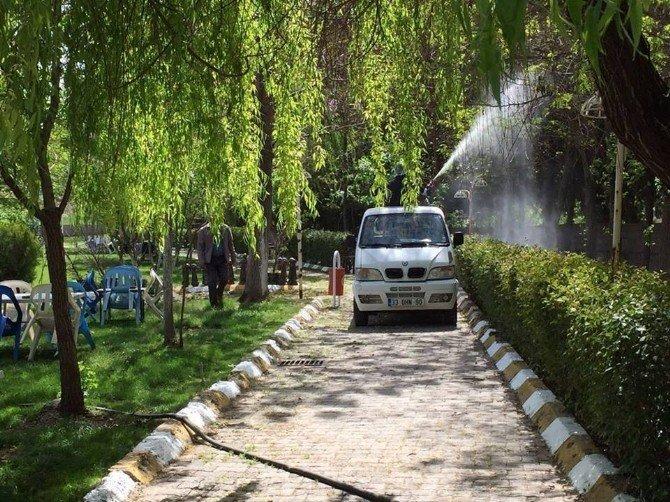 Parklarda Bakım Ve İlaçlama Çalışmaları Devam Ediyor