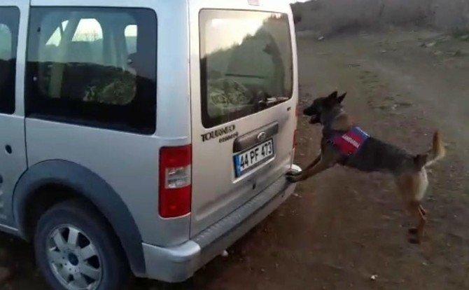 Şüpheli Araçta 60 Kilo Esrar Ele Geçirildi