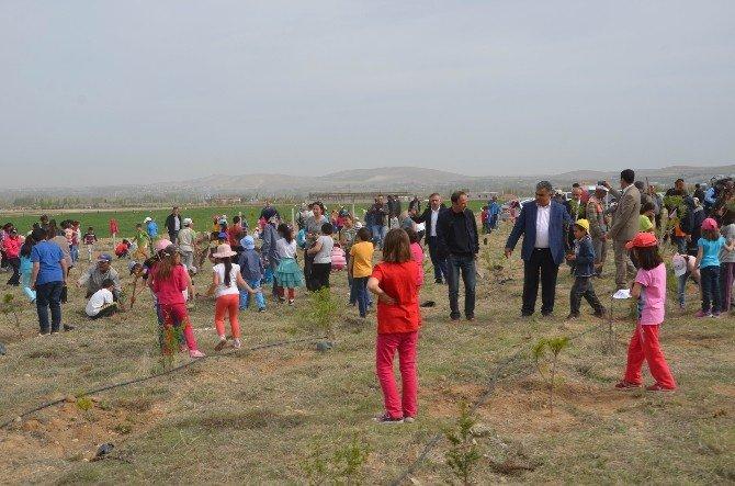 Ereğli'de Öğrenciler 2 Bin Fidanı Toprakla Buluşturdu